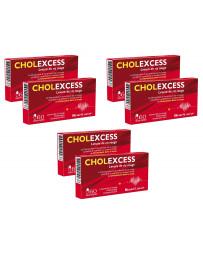 Bio Santé Senior - Cholexcess - 3 lots de 2 boîtes de 60 gélules
