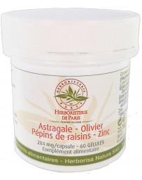 Herboristerie de paris Astragale Olivier Pépins de raisins Zinc 60 gélules antioxydants protection des télomères