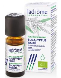 Ladrôme Huile essentielle bio Eucalyptus radié radiata 10ml bronches gorge hiver Pharma5avenue