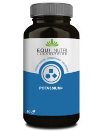 Equi Nutri Potassium + 60 gélules végétales citrate de potassium Pharma5avenue