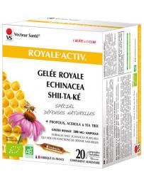 Vecteur Santé Royale Activ 20 ampoules de 10ml échinacée propolis gelée royale Pharma5avenue
