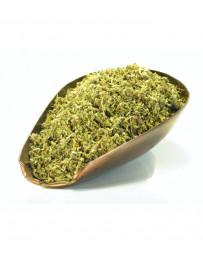 Herboristerie de Paris Damiana feuille coupée 100gr Turnera diffusa var. aphrodisiaca Pharma5avenue