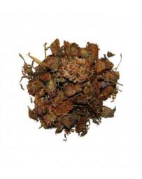 Herboristerie de Paris Trèfle rouge fleur 100gr isoflavones trifolium partense Pharma5avenue