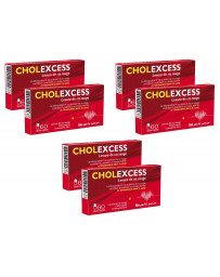 Bio Santé Senior - Cholexcess - 3 lots de 2 boîtes de 60 gélules levure de riz rouge