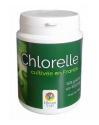 Flamant vert Chlorelle 180...