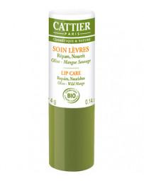 Baume à lèvres réparateur et ultra nourrissant Olive Mangue 4 gr Cattier - soin des lèvres