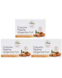 Herboristerie de Paris Curcuma pipérine gingembre fort modèle cure de 3 x 60 comprimés